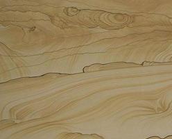 Wood Grain Sandstone