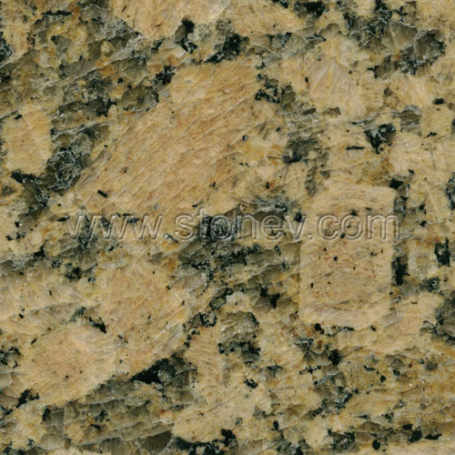 Brazilian Granite Slabs : Brazil granite giallo fiorito photos and technical data