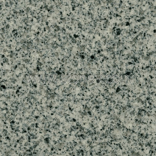 Granite G614 Padang Grey From China G614 Tiles G614