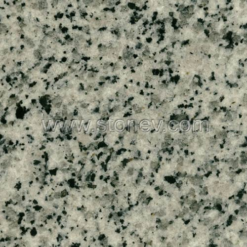 Granite G640 White Leopard