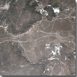 Spain Marble Crema Marfil