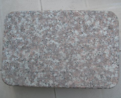 G687 Paving Stone
